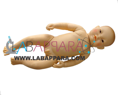 High Intelligent Infant Simulator, educational model,Medical instruments supplier, Laboratory equipments exporter, School equipments, biological instruments, zoological equipments, University Instruments, Scientific instrument manufacturer, Industrial instrument dealer, Research Equipment, lab Instruments Manufacturer, Supplier, Exporter.